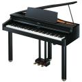 Цифровой рояль Roland RG-1F-SB