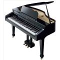 Цифровой рояль ROLAND RG-3F-PE