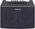 Комбоусилитель для акустической гитары Roland  AC-60 2х30Вт, 2x6