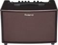 Комбоусилитель для акустической гитары Roland  AC-60-RW  2х30Вт,